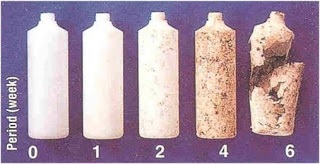 biodegradeerbare fles